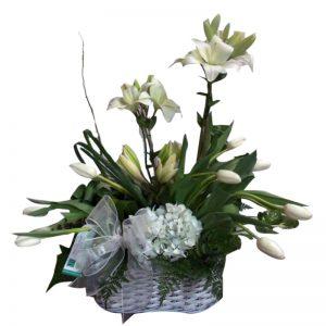 florería en Santiago de surco